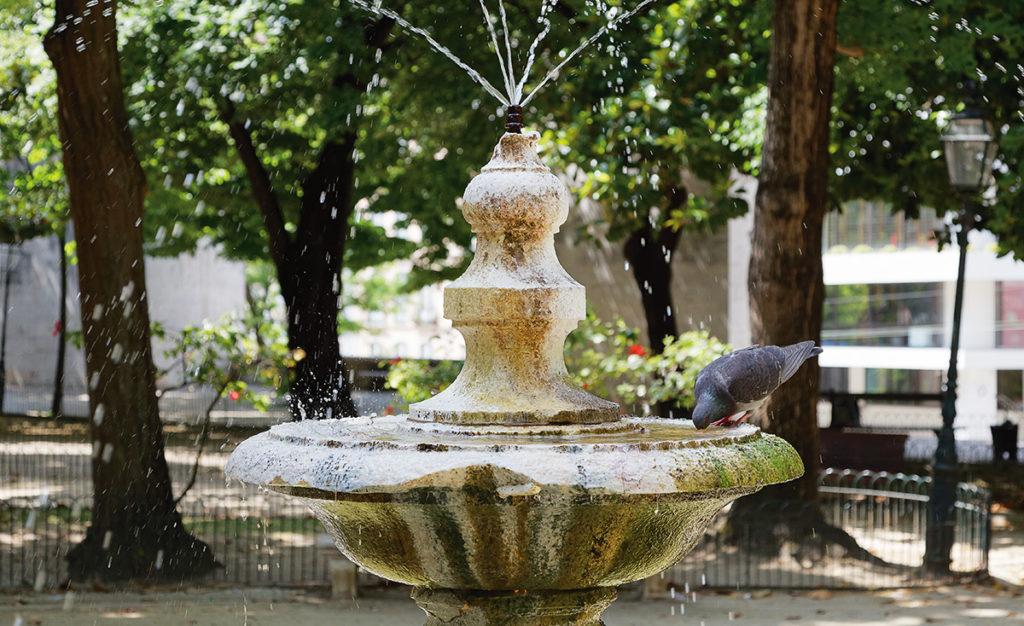 Foto einer Taube auf einem Brunnen im Praca das Amoreiras in Lissabon