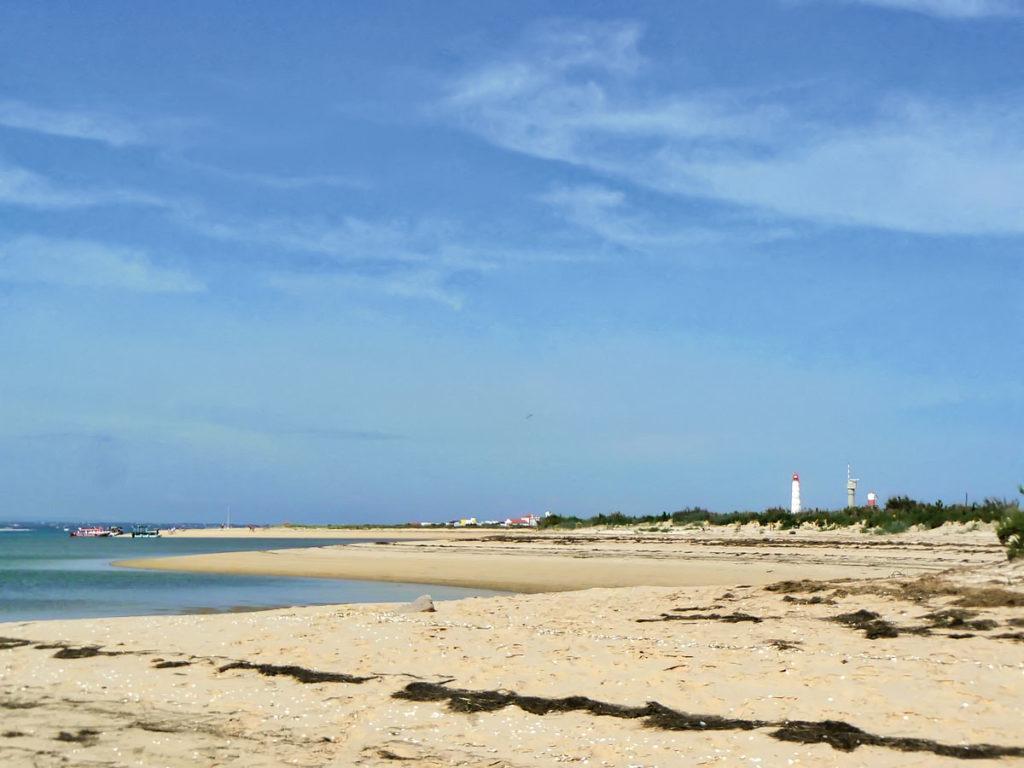 Blick über den Lagunenstrand von Ria Formosa (Algarve)