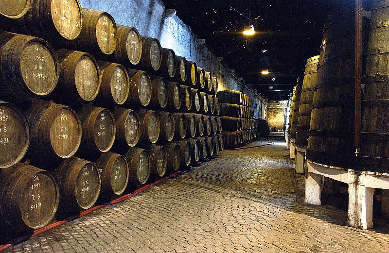 Foto eines Weinkellers am Rio Douro