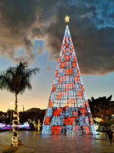 Foto vom Weihnachts-Leuchtbaum in Funchal 2020/2021